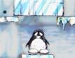 גג לפינגווין