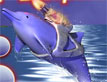 דולפין צבאי