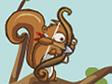 אגוזי הסנאי