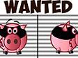 החזיר השודד