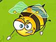 איסוף דבש
