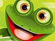 עולם הצפרדע