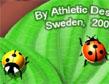רכבת חיפושיות