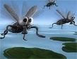 משחק פשטידת זבובים