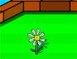 משחק חיי צמח