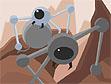 משחק העכביש