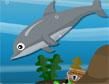 דולפין עמוק