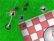 משחק מבצר פיקניק