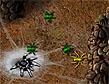 משחק מלכות העכבישים