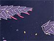 משחק חלל פנימי