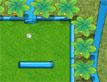 משחק גולף גינה
