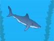 משחק מזון כרישים