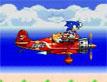 משחק Sonic Double Panic