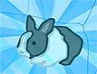 הצילו את הארנב: חורף