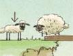 כבשה קטנה, כבשה שמנה