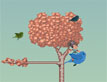 משחק בלה של מאה הציפורים