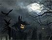 ינשופים בחושך
