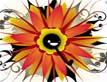 הפרח הקוסמי