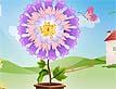 פרחים קסומים