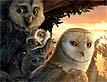 משחק אגדה עם כנפיים: ינשופאזל