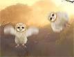 אגדה עם כנפיים: גוזלים