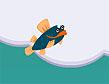 משחק הדג המעופף