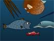 משחק הכי גדול בים